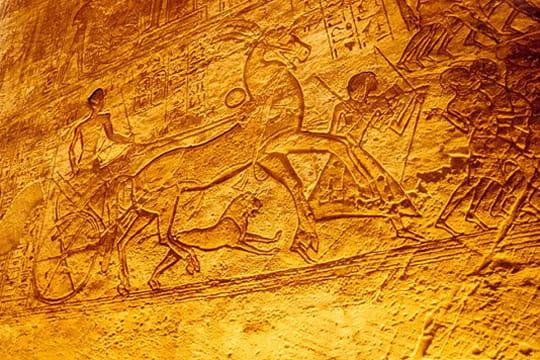 Toute une vie symbolisée par des hiéroglyphes