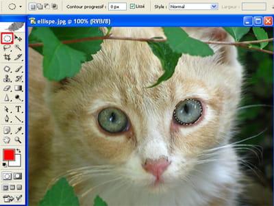 sélectionnezdes sujets de forme elliptique comme des yeux par exemple.