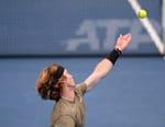 Tennis : Tournoi ATP de Vienne