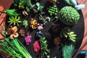 Le Noma, ex-meilleur restaurant du monde, devient végétarien