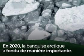VIDEO. Banquise arctique : la fonte s'accélère selon des chercheurs américains