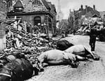 Juin 1940 : le grand chaos