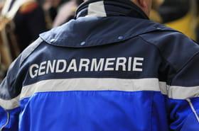 Jean-Marc Reiser: a-t-il tué Sophie Le Tan? Son terrible passé resurgit