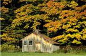 Vos meilleures images d'octobre 2010