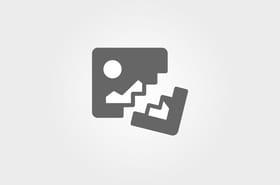 Miss.Tic présente Go Homme