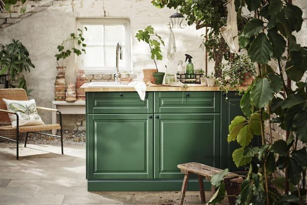 Une cuisine verdoyante