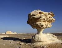 Planète Terre : aux origines de la vie : Le Sahara
