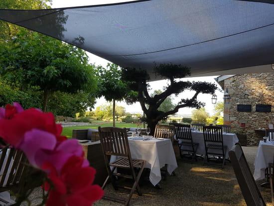 Restaurant : Pavillon du Chateau  - Terrasse -   © pavillon