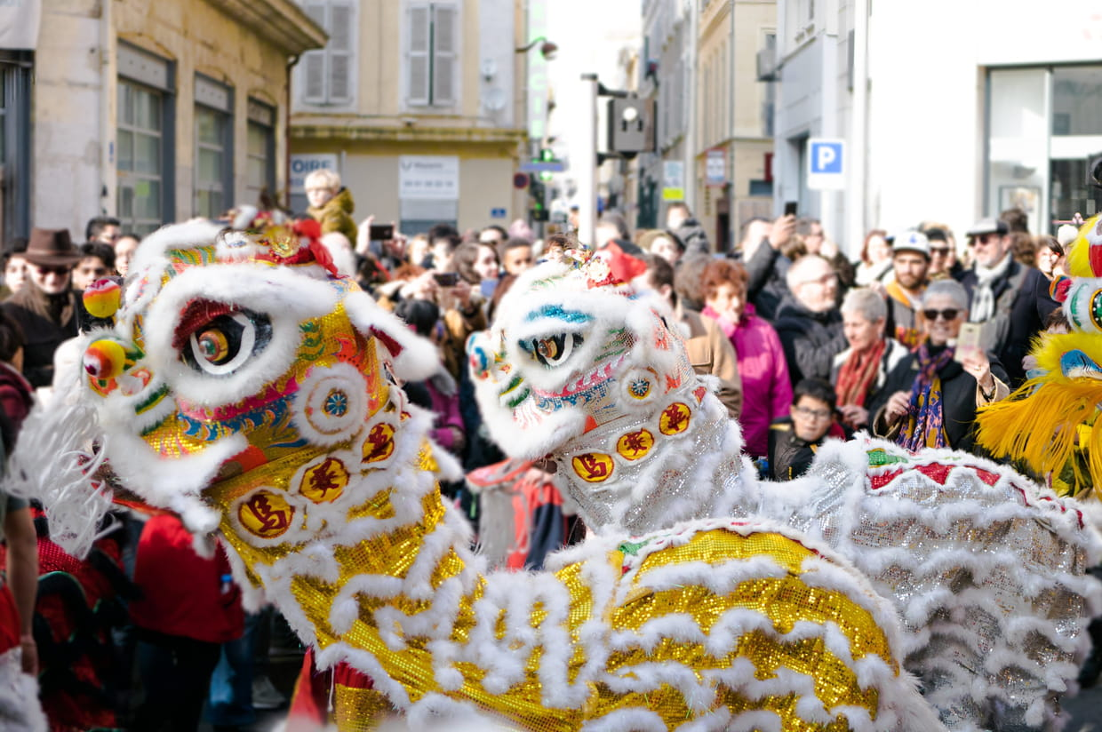 Coloriage Animaux Horoscope Chinois.Nouvel An Chinois 2019 Votre Horoscope Chinois Dans L Annee Du Cochon