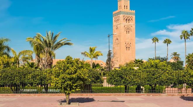 Marrakech: que faire et que visiter? Bons plans, souks, plages... Guide de voyage