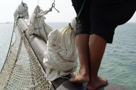 En haut des mâts, les équilibristes de la mer