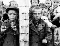 C'est un complot ! : Les camps de concentration ont-ils vraiment existé ?