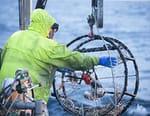 Péril en haute mer : la relève
