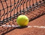 Tennis : Open d'Australie - Sofia Kenin / Garbiñe Muguruza
