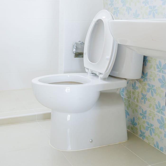 d sinfecter les toilettes. Black Bedroom Furniture Sets. Home Design Ideas