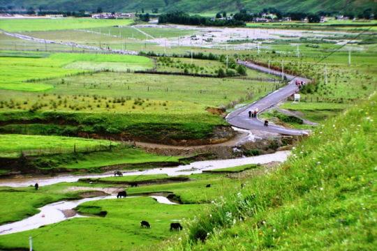 Sentier Sichuan