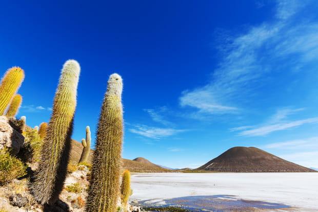 Désert de sel en Bolivie