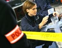 R.I.S. Police scientifique : Puzzle