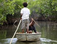 Des îles et des hommes : La Nouvelle-Calédonie : retour aux sources