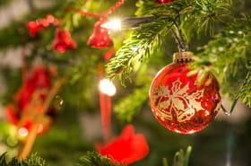 Sapin de Noël: naturel ou artificiel, bien le choisir, quel budget...
