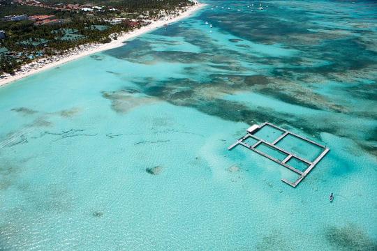 L'île aux dauphins à Punta Cana