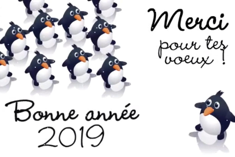 Bonne Annee 2019 Textes Images Dessin Des Idees Pour Des