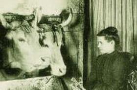 La France rurale en 1900