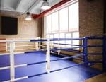 Boxe : Championnat du monde WBA - Chris Colbert / Nyambayaryn Tögstsogt