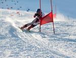 Ski alpin : Coupe du monde