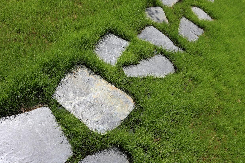 Comment Placer Des Dalles De Jardin pas japonais : comment réaliser une allée en pas japonais