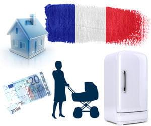 le portrait des français en 2011.