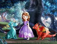 Princesse Sofia : Le pique-nique des dragons