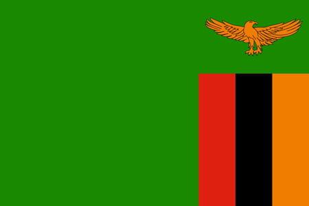 Score Zambie