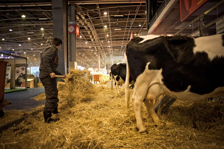 Salon de l 39 agriculture dates 2018 programme ce qu 39 il for Programme salon agriculture 2015