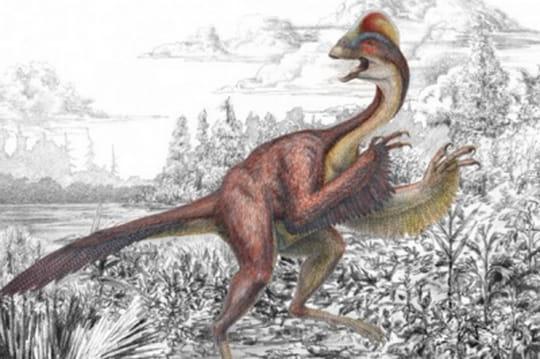 """Un nouveau dinosaure découvert: """"il ressemblait à un poulet géant"""""""