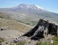 Planète Terre : aux origines de la vie : Le mont Saint-Helens