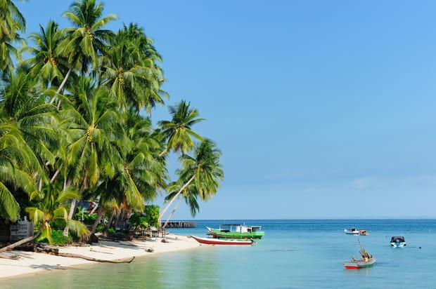 L'île de Derawan: pour la plongée
