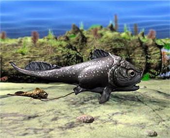 cette espèce vivait il y a 360 millions d'années.
