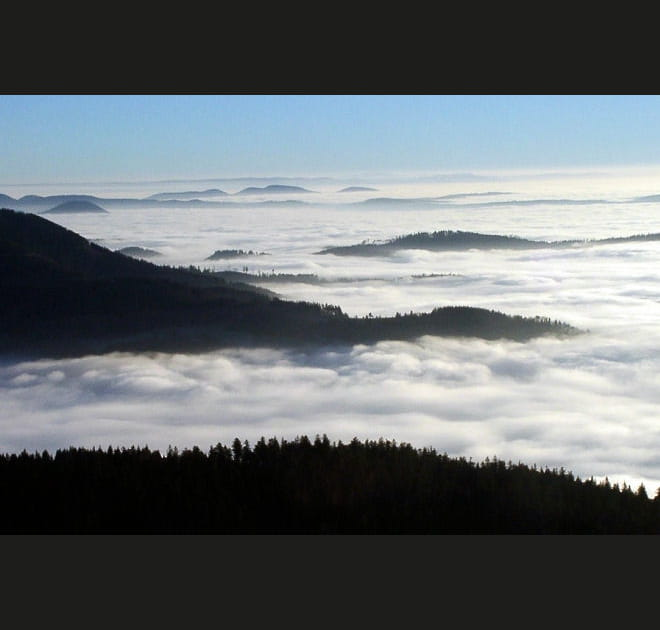 Merveilleuse Forêt Noire