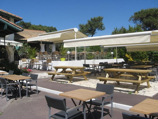 Le Coquillage  - Restaurant Le Coquillage Terrasse -   © Le Coquillage