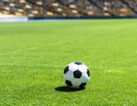 Ligue 2 BKT - Grenoble Foot 38 / Paris FC