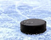 Hockey sur glace : NHL - Wild / Blues