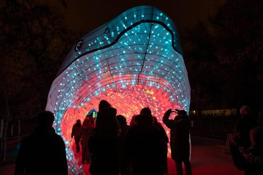 Le Festival des Lumières du Jardin des Plantes de retour à l'automne