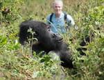 La famille gorille et moi