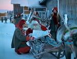 Laponie : le pays du père noël