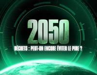 2050, déchets : peut-on encore éviter le pire ?