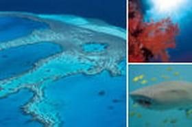 La Grande Barrière de Corail en Australie