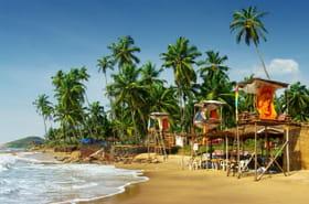 En Inde, Goa interdit la consommation d'alcool sur les plages