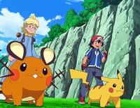 Pokémon : la ligue indigo : Epreuve et belles aventures