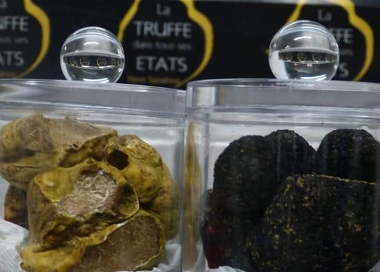 La Truffe dans tous ses Etats  - la truffe blanche d'Italie -